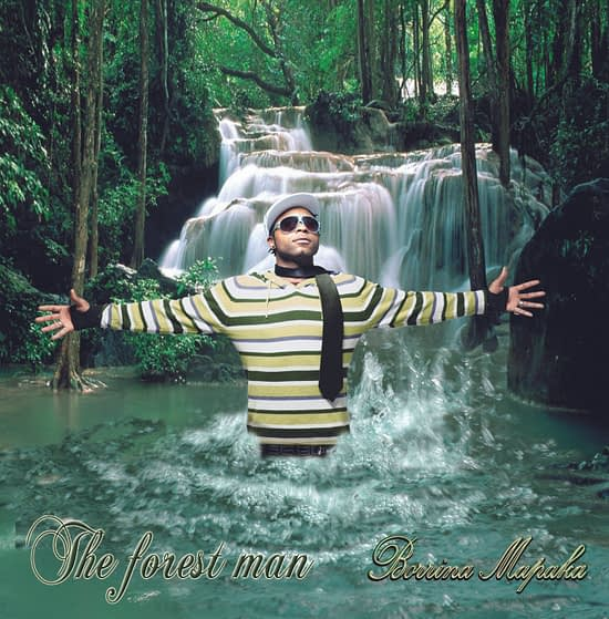 Pochette de l'album THE FOREST MAN de Borrina Mapaka
